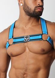 Cellblock 13 Kennel Club Scout Harness Turquoise