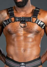Mr S Leather Back Alley Bulldog Harness