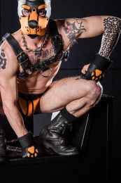 Mr S Leather Open Paw Puppy Gloves Black Orange