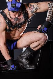 Mr S Leather Open Paw Puppy Gloves Black Royal