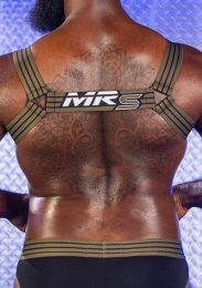 Mr S Leather Artillery Harness Green
