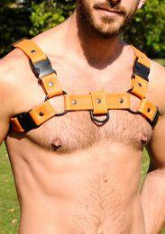 Gilded Fetish Leather Bulldog Sport Harness Orange